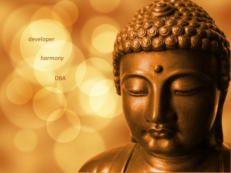 developer-dba-harmony-buddha