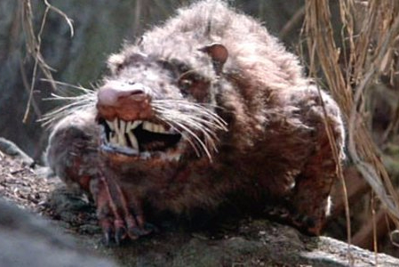 rodent of unusual size
