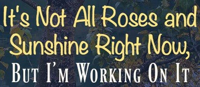 Its-Not-All-Roses-and-Sunshine-Right-Now-But-Im-Working-On-It