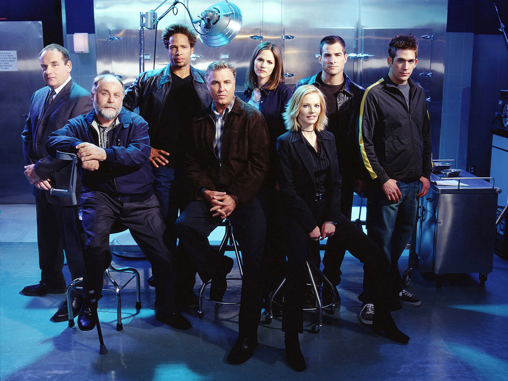 the cast of CSI LV
