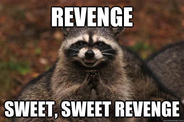 sweet sweet revenge raccoon